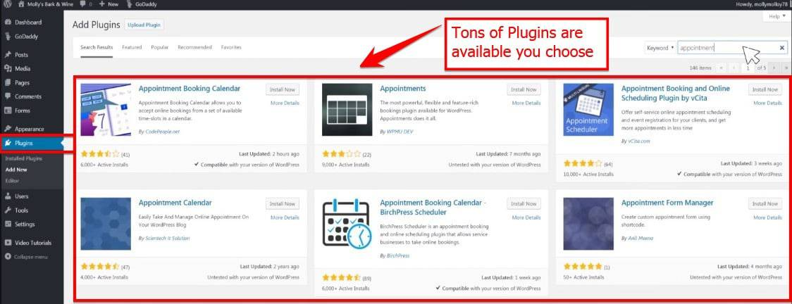 Choose Tons Of Plugins Available For Word Press