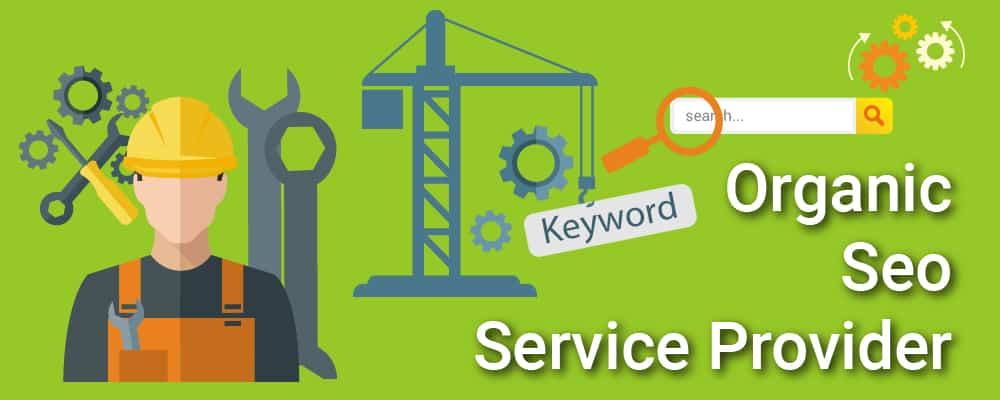 Organic S E O Services For Your Website Ranking In Search Engine