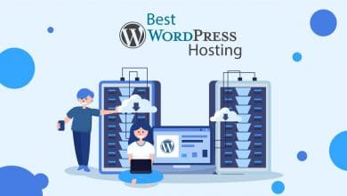 The Best Hosting For Wordpress Between Shared & Managed