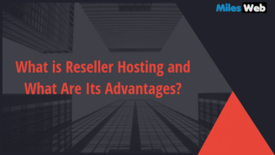 What Is Reseller Hosting And What Are Its Advantages