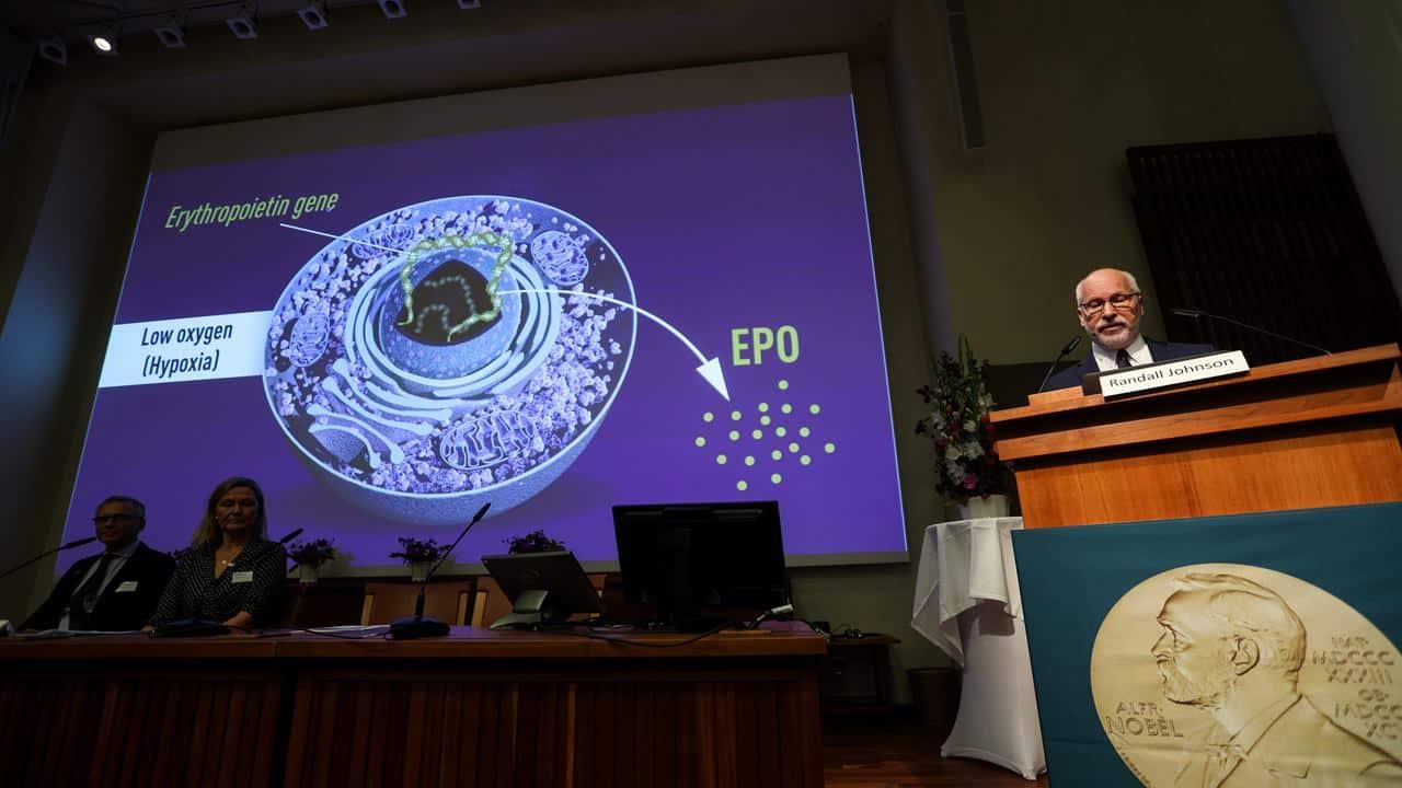 3 Scientists Share 2019 Nobel Prize