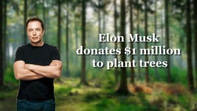 Photo of Elon Musk donates $1 million to plant trees