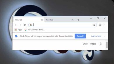 Google Search To Stop Supporting Flash Content