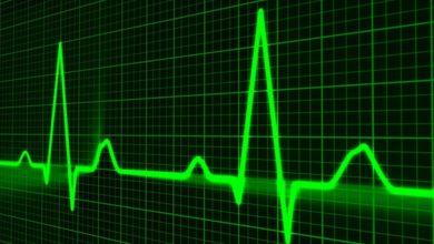 Photo of AI tool to predict life expectancy in heart failure patients