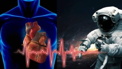 Space Alters Human Heart Cells Which Return