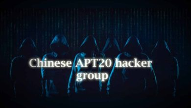 Chinese A P T20 Hacker Group