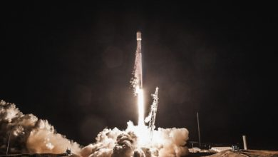 Space X Spacecraft With 'mighty Mice' Launches To Space