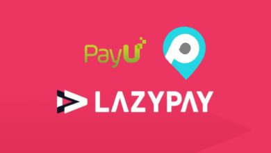 Pay U Buys Pay Sense For $185mn, To Merge With Lazy Pay