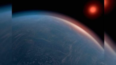Exoplanet Could Have Right Conditions For Life