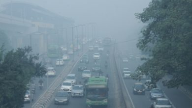 Aqi Moderate In Delhi May Improve By Friday