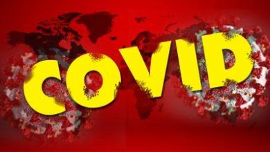 Photo of 226 new coronavirus positive cases in Madhya Pradesh
