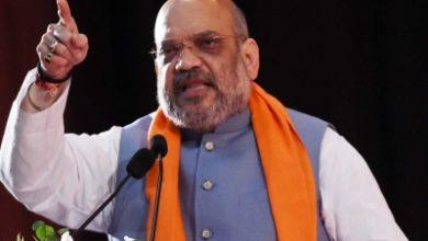 Amit Shah Calls Jk Dgp Appreciates Role Of Police