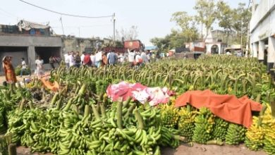 Tn Banana Farmers Go Bananas On Slippery Lockdown