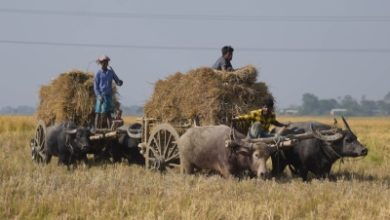 Photo of With repair shops closed, farmers fear delay in crop harvests