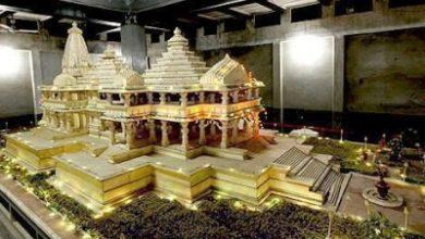 Photo of Ayodhya saints, Babri plaintiff slam Pak remark on temple