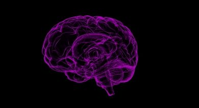 Iit Guwahati Finds New Ways To Prevent Memory Loss Due To Alzheimers