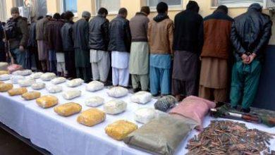 Photo of 17 terrorists involved in Kabul bombings held