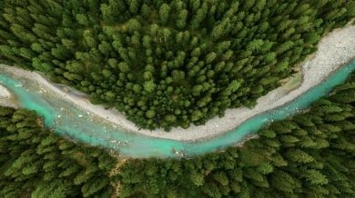 Photo of Beauty giant plans to be fully sustainable by 2030