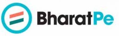 Bharatpe Hires Ex Walmart Labs Executive In Senior Role