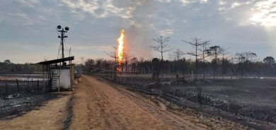 Experts From Us Canada Join Hands To Douse Assam Oil Well Fire