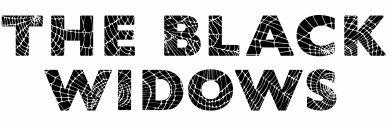 Photo of International show 'Black Widows' to get Indian remake