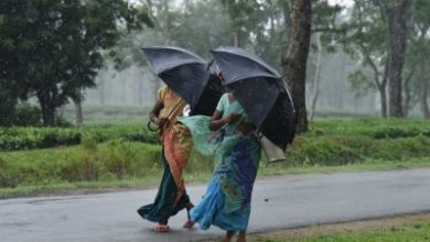 Photo of Low pressure area in Bay of Bengal may cause rain in Odisha