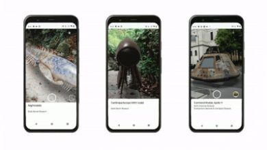 Google Brings Ancient Creatures Back To Life With Ar