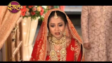 Vidhi And Ved Are Finally Married Aye Mere Humsafar